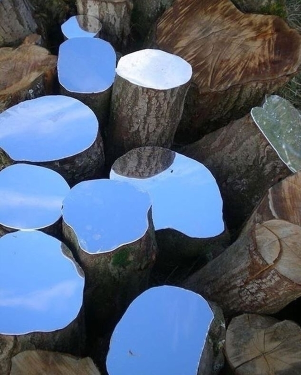 Mirror tree stump sculptures Le - sydbotanica   ello