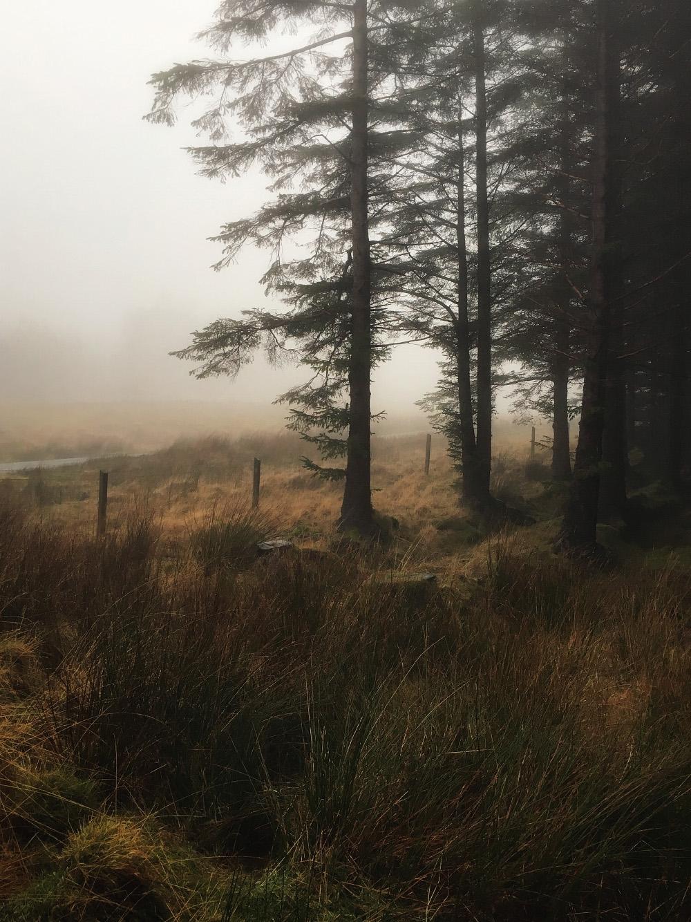 Cool soothing rain falls road G - julian_calverley | ello