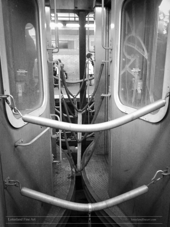 Peeking subway cars, 13 Jan. 20 - wlotus | ello