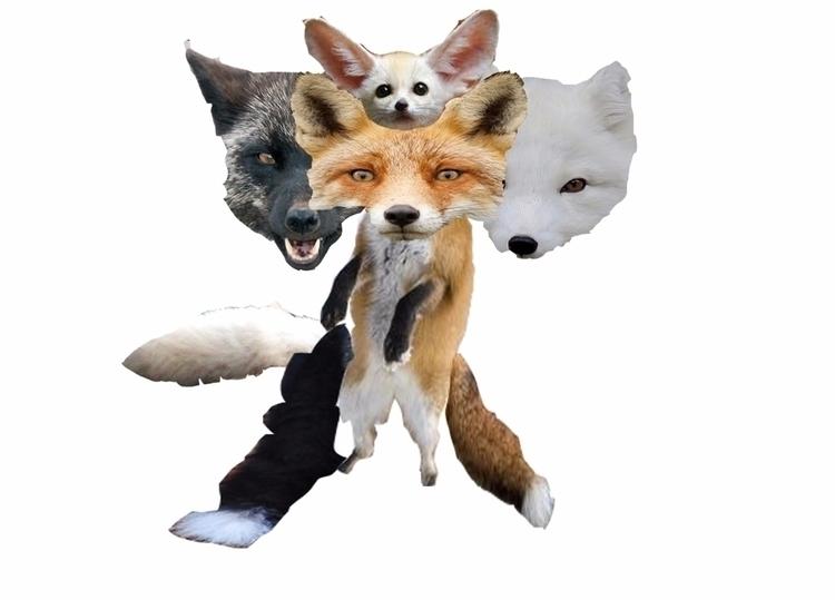 fox - Foxy - piopkj | ello