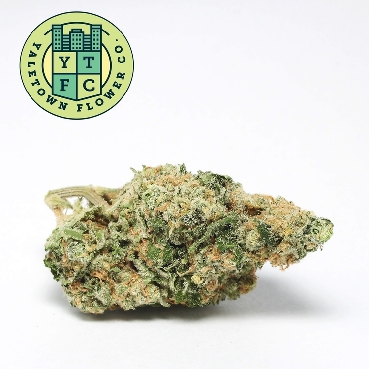 fresh batch Yaletown Flower Co - ytfc | ello