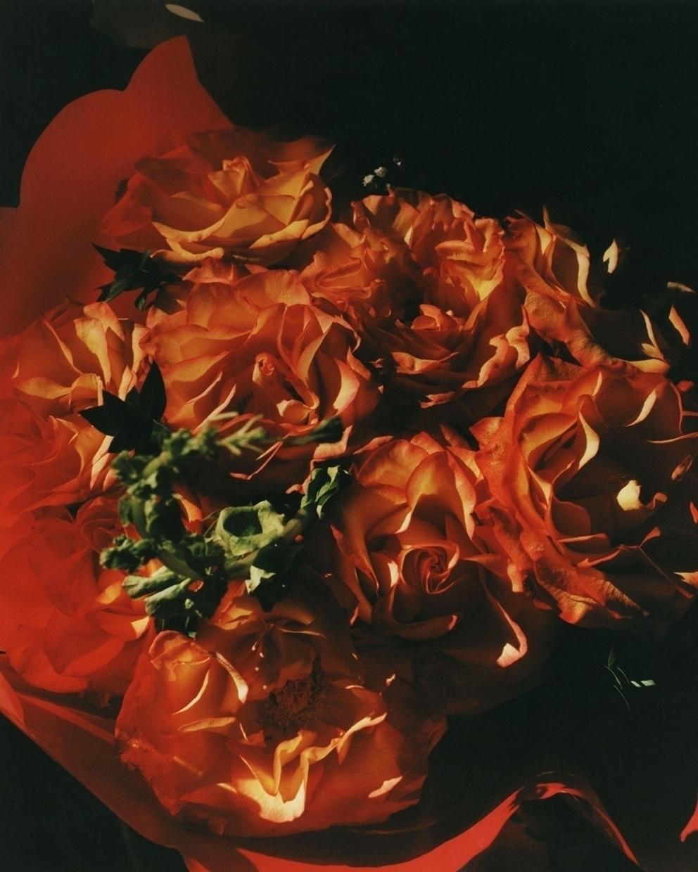 Bouquet - darkroom print - patmartin | ello