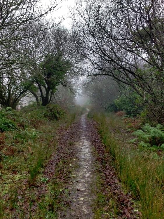 TRAIL*** walked muddy path. mea - johnhopper | ello