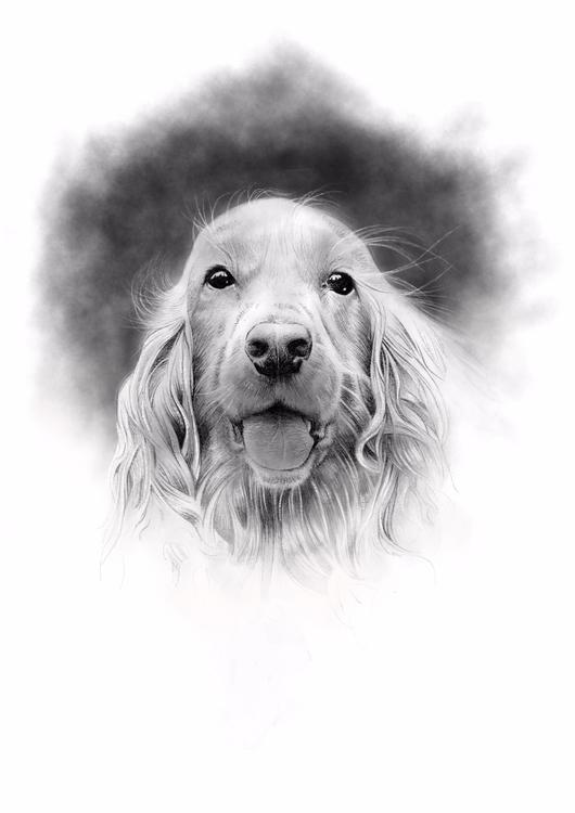 dog - crapatquake | ello