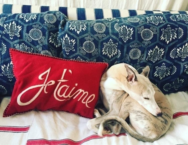 True Love barks sleeping - Valentine - solangeleoniriarte | ello