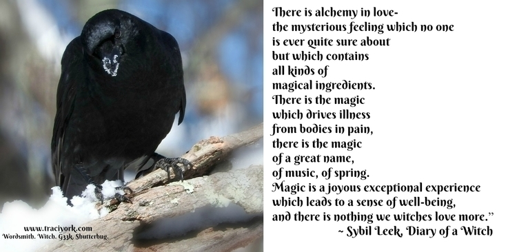 Witchy Wednesday, revising post - traciyork | ello
