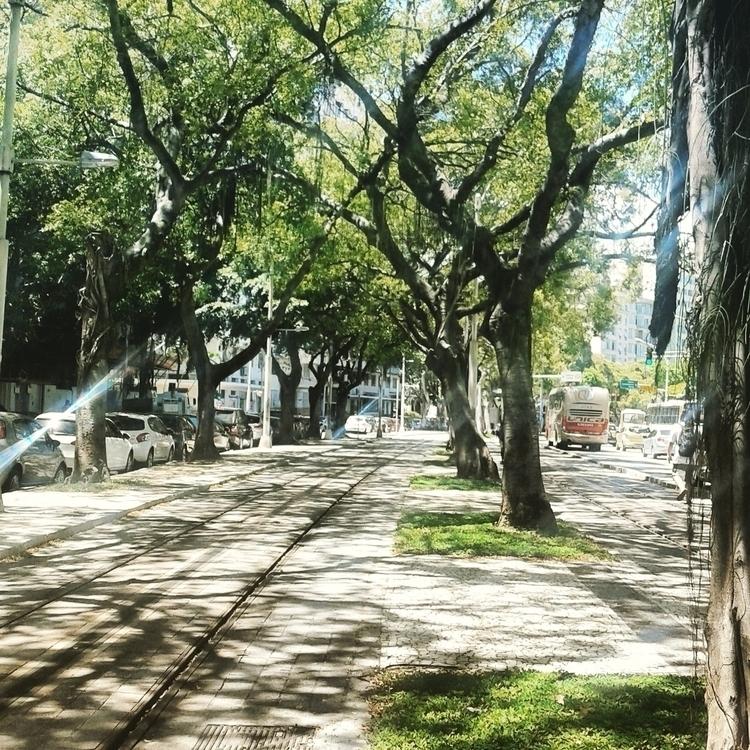 Rails VLT (RJ/Brazil) 2017 - edsonlac58   ello