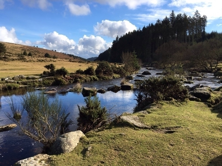 Beautiful Dartmoor National Par - oceanromeo | ello