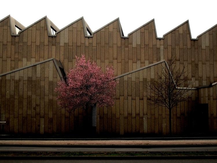 Contrasts Existence Berlin - photography - artemilio | ello