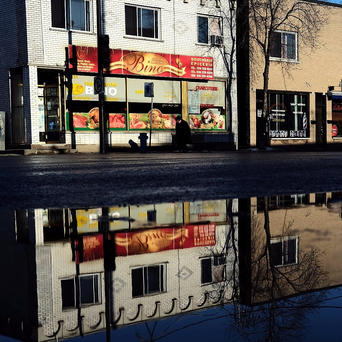 Bino golden reflection - street - maximemartin | ello