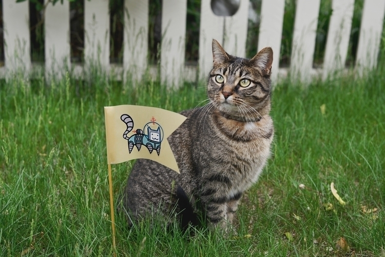 Curiosity Killed Cat curiosity - likeamindreader | ello