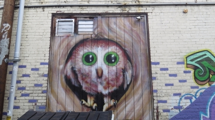 Baby Owl Video Surveillance Art - dave63 | ello