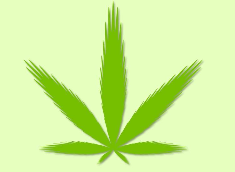 mathematical formula - Cannabis - bit101 | ello