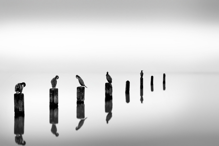 George Digalakis. Check work - refing | ello