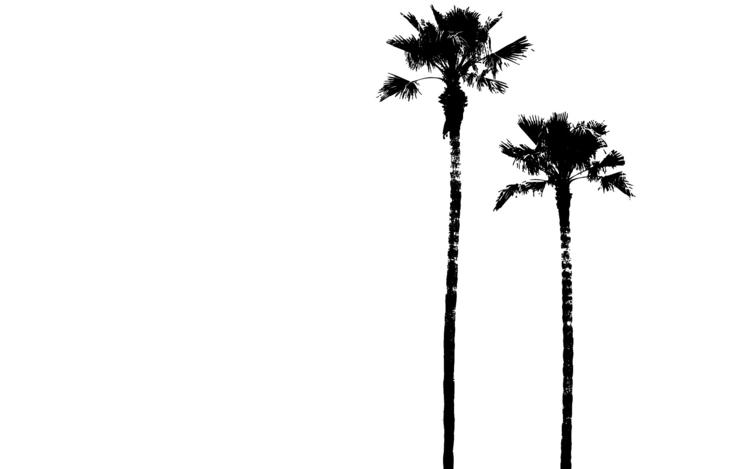 OP-C014 San Diego Palms - orangeandpark | ello