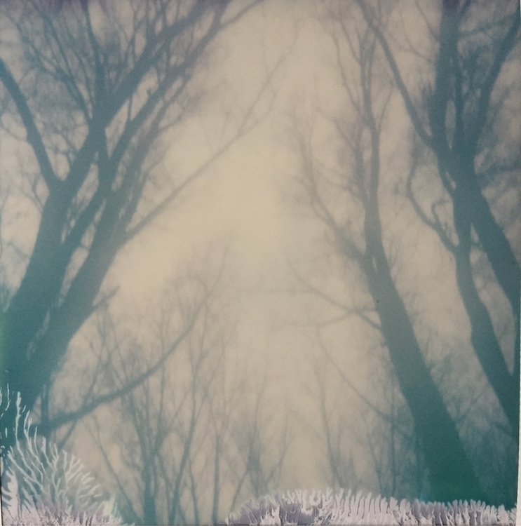 Happy polaroid series rememberi - jasmijnduterloo | ello