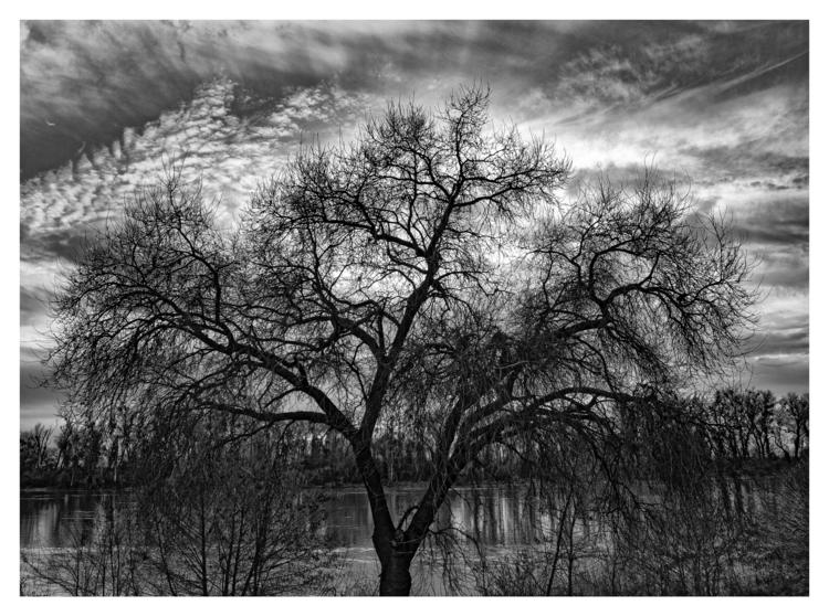 Sacramento River, CA - guillermoalvarez | ello
