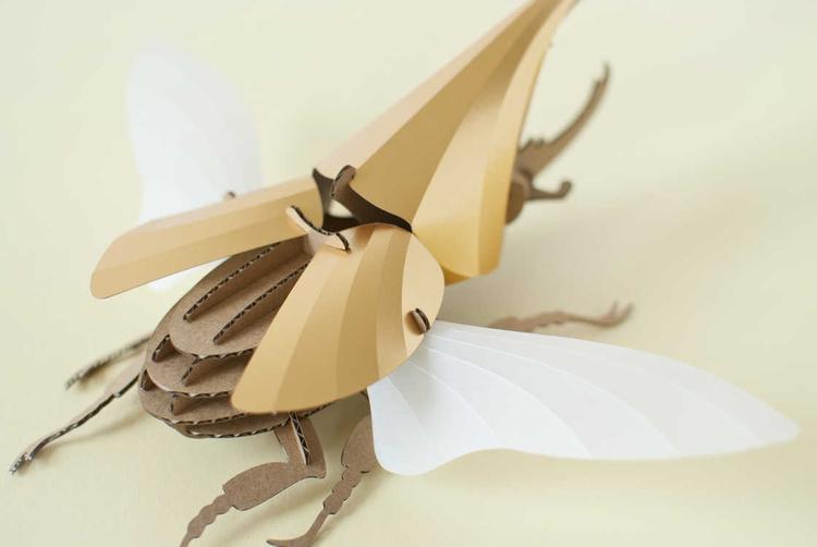 Amazing paper beetles - didinooz | ello