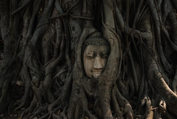 2017 Perfilyev Ilya - Bangkok,, Ayutthaya - perfilyev | ello
