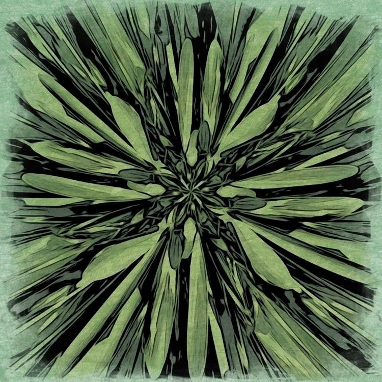 Green Bush Garden Apps - mikefl99 - mikefl99 | ello