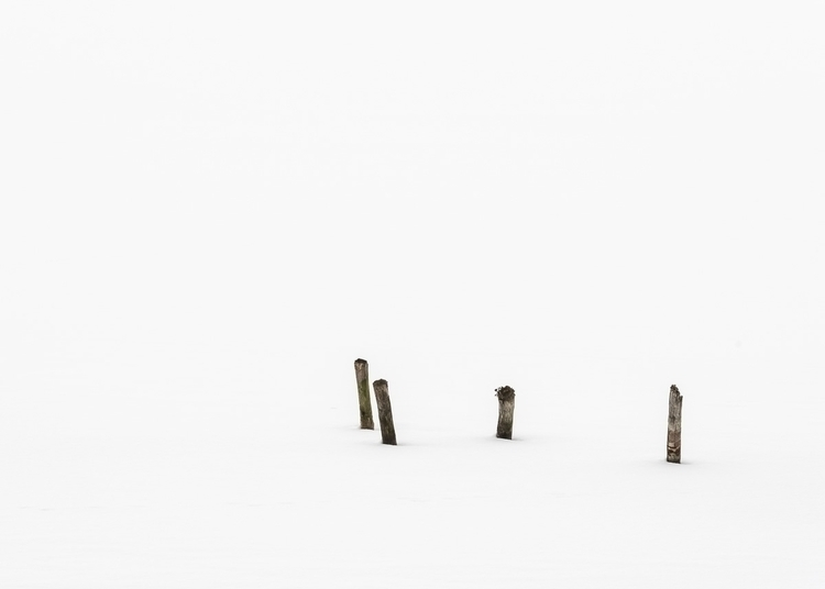 poles white - nature, natureart - peter_skoglund | ello