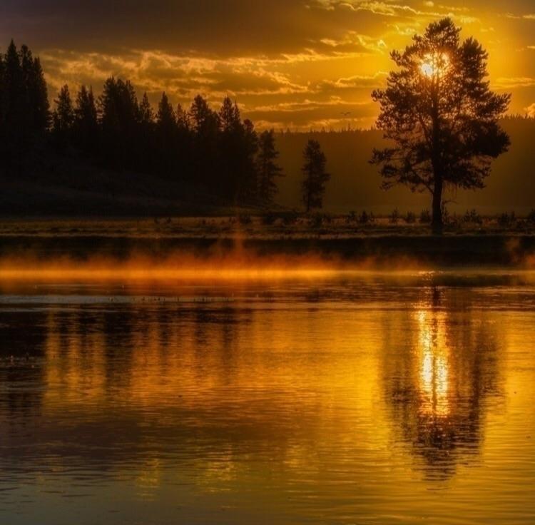 nature, sunset, follow, Ello - chubbycow | ello