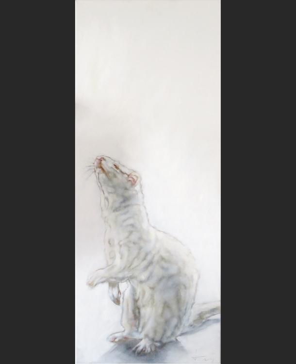 pet project: Ferret (Teun) 100 - jahupo | ello