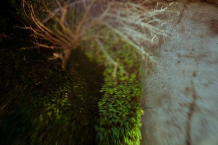 Ello nature - distortion, lensbaby - cataluna   ello