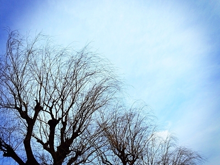 sky, blue, chilly - mamimumemami | ello