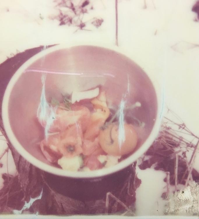 compost - polaroid, ellophotography - jkalamarz | ello