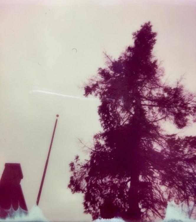flagpole - polaroid, ellophotography - jkalamarz | ello