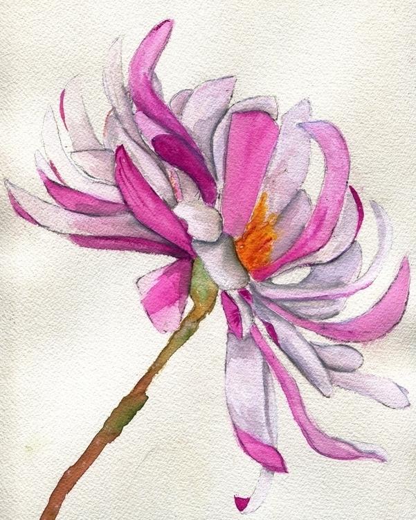 Stellata Watercolor Gouache Cot - havekat | ello