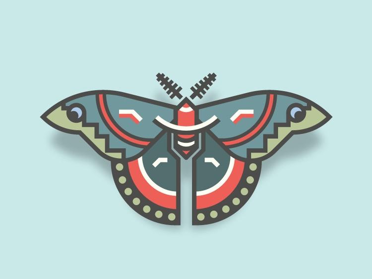 Cecropia Moth (26/365 - darumacreative | ello