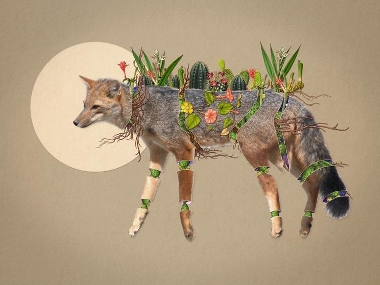 Bestiario: Zorro gris Collage 0 - santasombra | ello