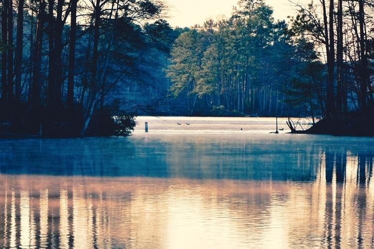 shadows cling reflections lake  - brxdlxy | ello