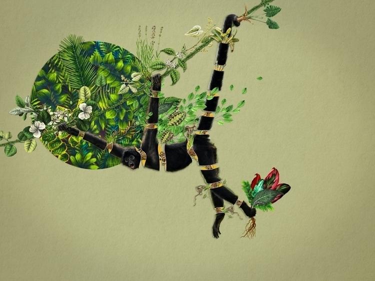 Bestiario: Mono araña Collage 0 - santasombra | ello
