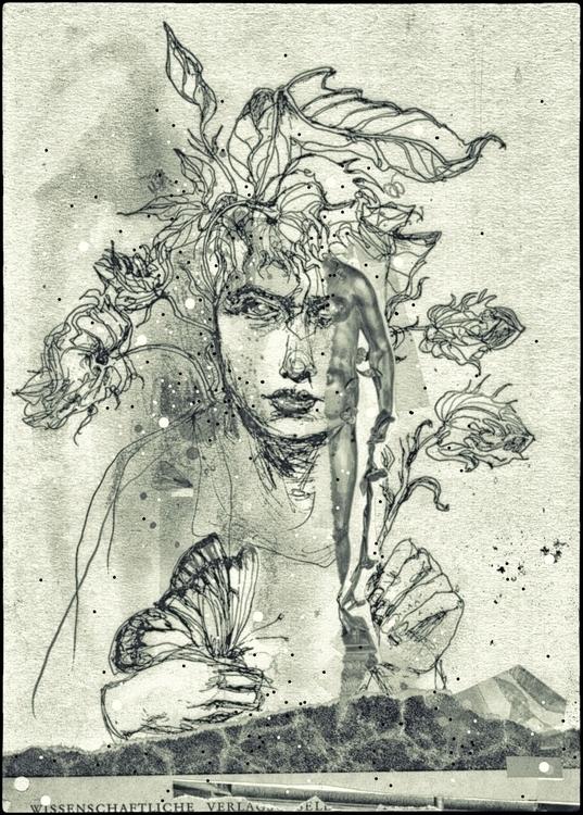 paint – picture plantvenus grap - claudine-pomowski | ello