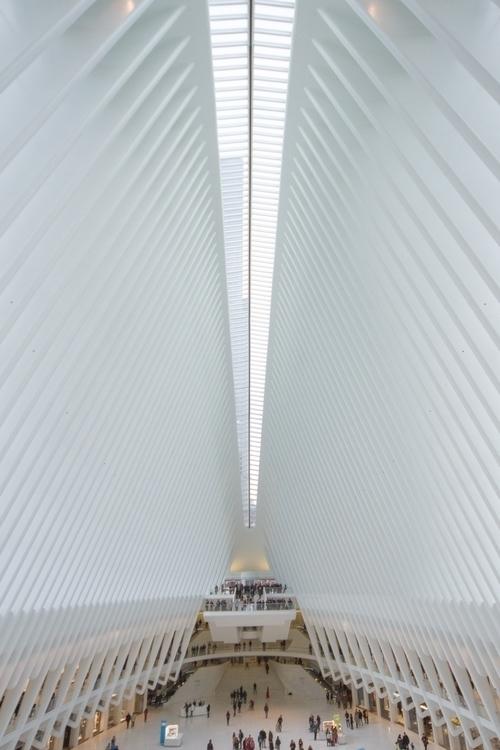 Oculus   - NewYorkCity, Manhattan - stephengreaves   ello