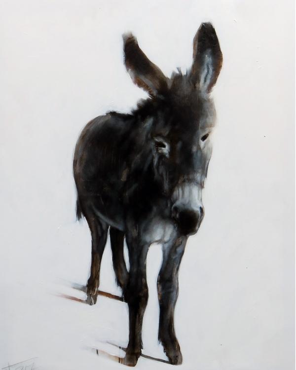 donkey - jahupo | ello