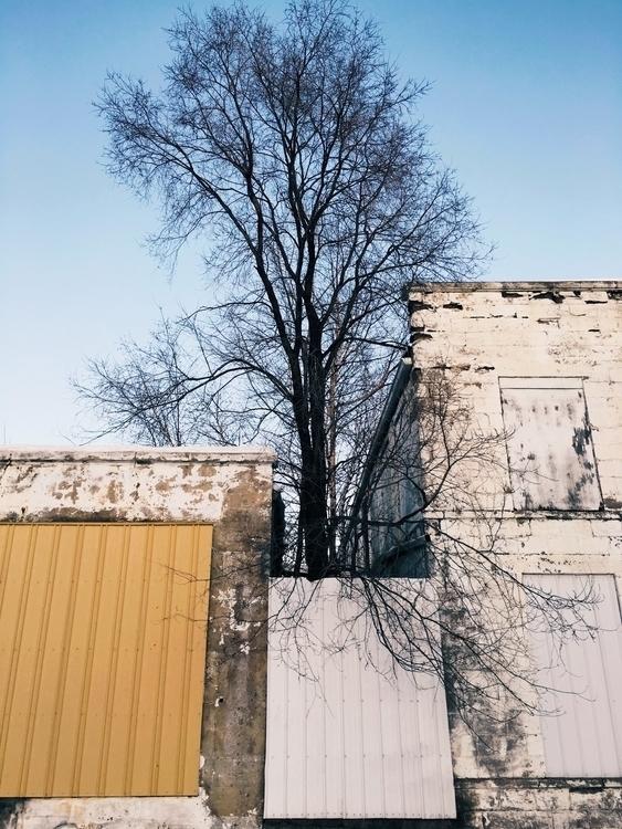 photography, ellophotography - jkalamarz | ello