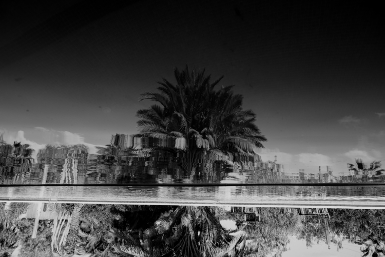 180°, San Miguel (Spain), Feb/2 - peterrunkewitz | ello