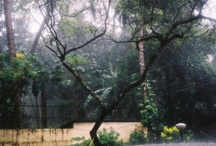 Front garden family home, Keral - vees | ello