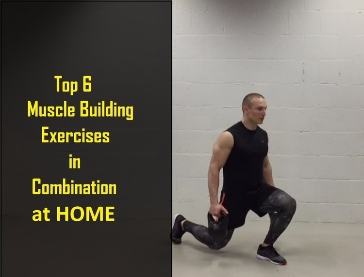 Top 6 Muscle Building Exercises - goldenbody_life | ello