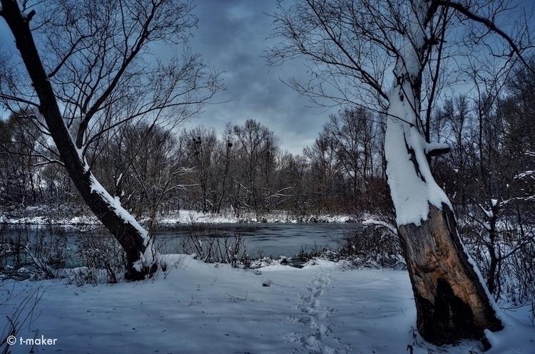 Trees River | Flickr: DeviantAr - t-maker | ello