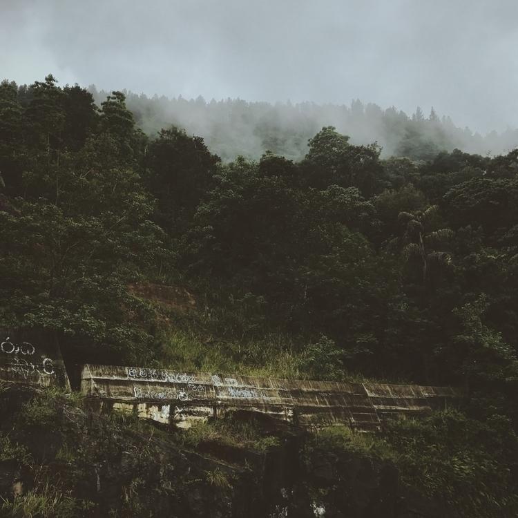 Woods - i_shankar | ello