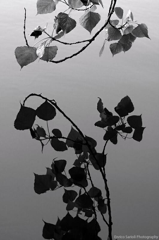 Black white landscape photograp - spike1979 | ello