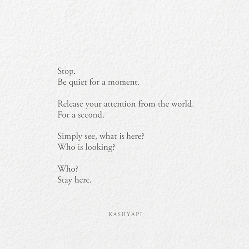 Quiet moment 01 / Stop. quiet m - kashyapi | ello