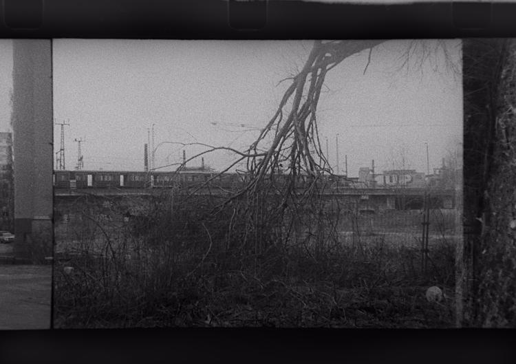 Berlin, Kodak 7266 - ellofilmphotography - stikka | ello