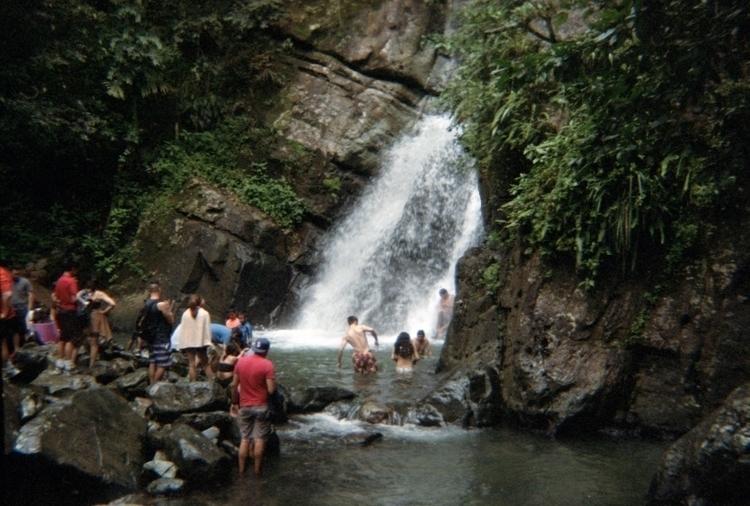 El Yunque National Forest, Puer - alexanderbauer   ello