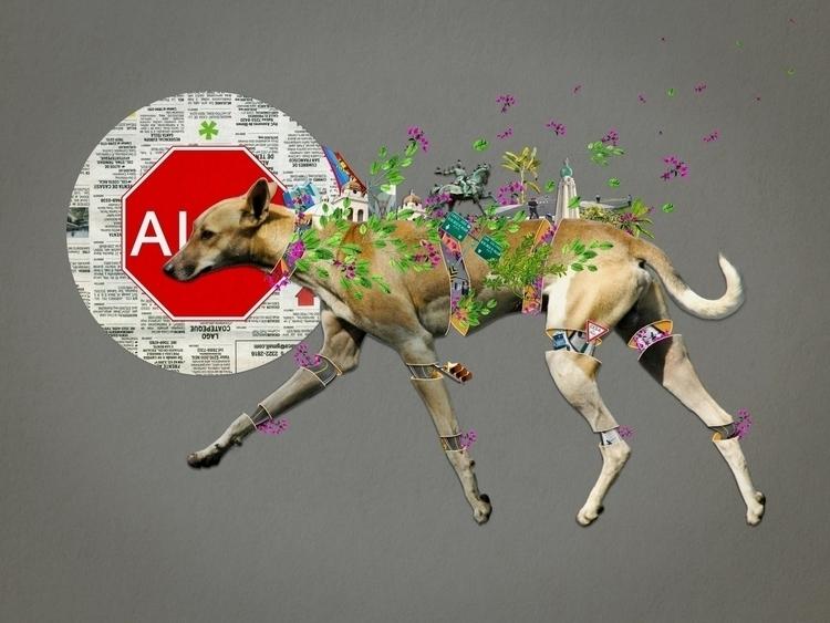 Bestiario: Perro callejero Coll - santasombra | ello